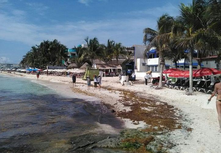 Sema y SEMARNAT dan prioridad a recuperación de playas. (Daniel Pacheco/SIPSE)