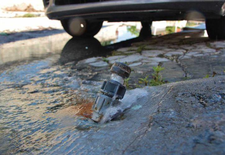 La CAPA estima que al día se pierden 3 mil litros de agua potable a causa de fugas.  (Gustavo Villegas/SIPSE)
