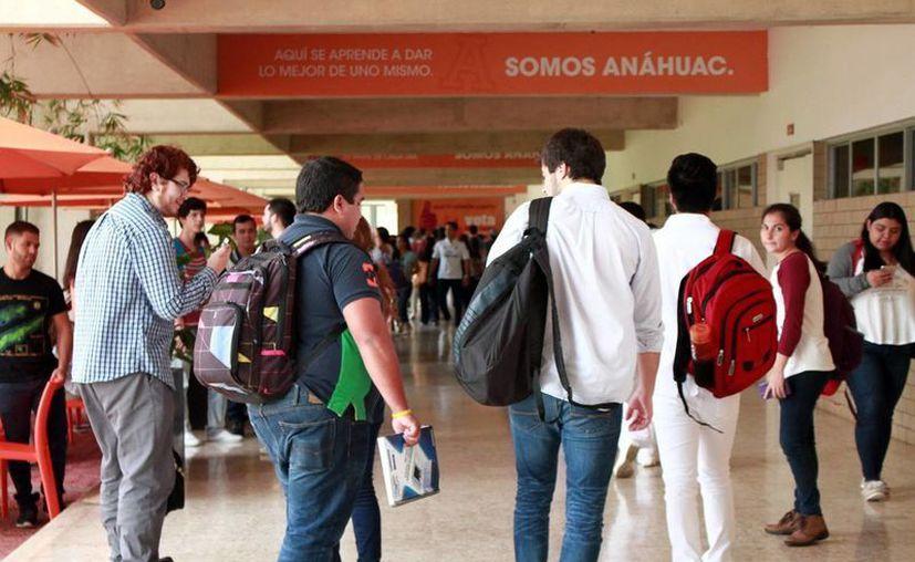Actualmente cuatro de cada 10 empresas yucatecas tienen a la cabeza a un joven ejecutivo o un grupo de jóvenes,de acuerdo con cifras de Canacintra y Coparmex. (Milenio Novedades)