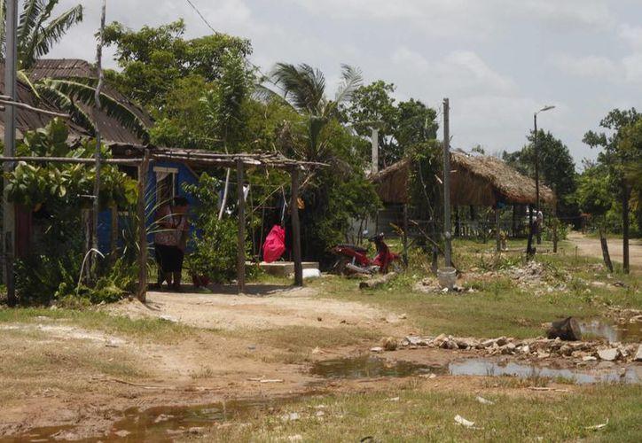 Las 150 familias de La Franja esperan tener acceso al agua potable y energía eléctrica. (Harold Alcocer/SIPSE)