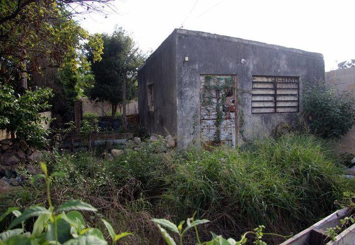Macabra escena descubrió un vecino de la colonia Melchor Ocampo, cuando se asomó en el patio de una casa abandonada y vio un cadáver. (Foto: Pallota/SIPSE)