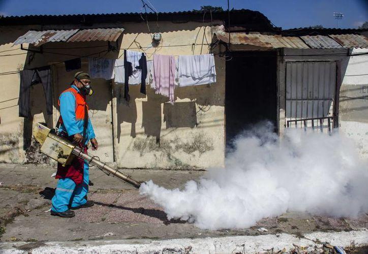 Un trabajador fumiga en la comunidad San Judas en San Salvador, El Salvador, para combatir al mosco transmisor del virus del zika. En breve la OMS podría decretar una emergencia internacional. (AP)