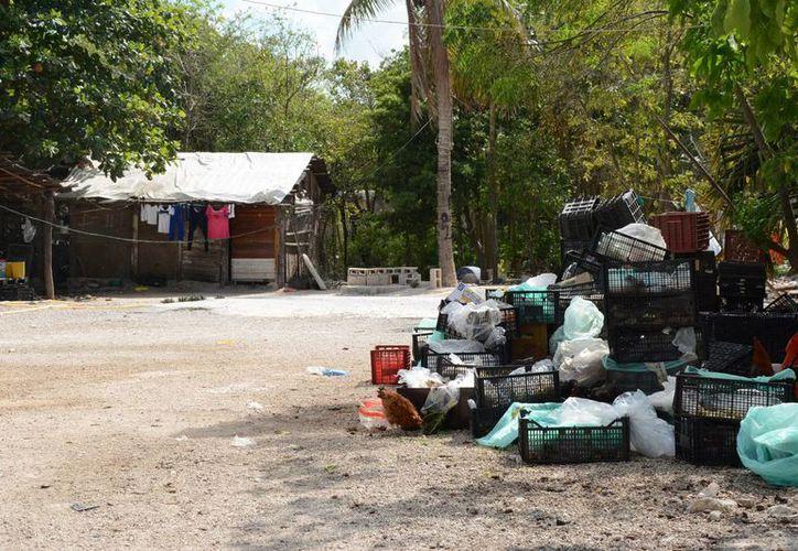 Las rutas y horarios de recolección de desechos continúan de manera normal. (Victoria González/SIPSE)