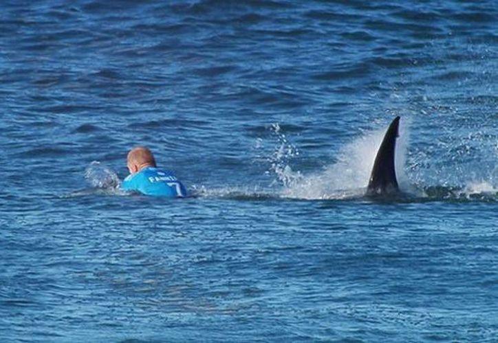 Imagen del momento en que Fanning reaccionó rápidamente y pudo salvarse gracias a su tabla, con la que se tapó de los ataque del tiburón. (Captura de pantalla/YouTube)