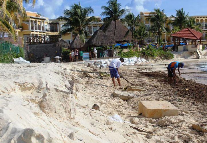 Especialistas recorrieron la playa El Recodo y los alrededores de Shangri-La. (Foto: Octavio Martínez/ SIPSE)
