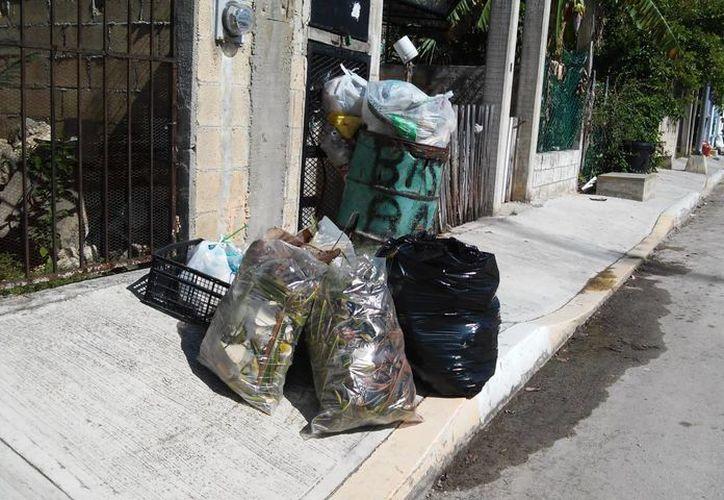 Habitantes de la colonia 28 de Julio denuncian que el camión recolector de basura pasa con poca frecuencia por la zona. (Yesenia Barradas/SIPSE)