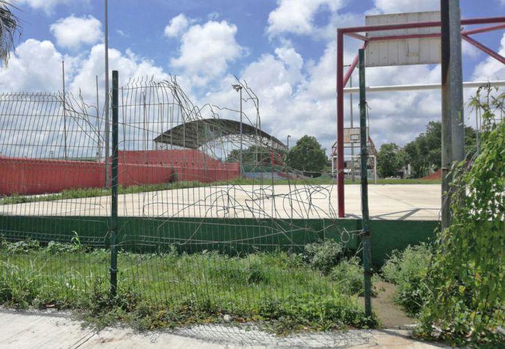 Las cercas fueron dañadas por los vándalos de la zona. (Jesús Tijerina/SIPSE)