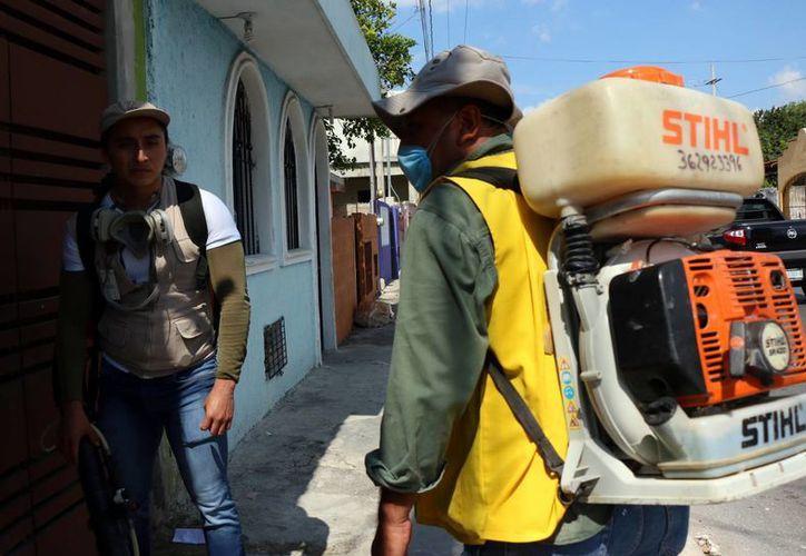 El personal de la SSY visita los hogares plenamente identificados. (J. Acosta/ Milenio Novedades)