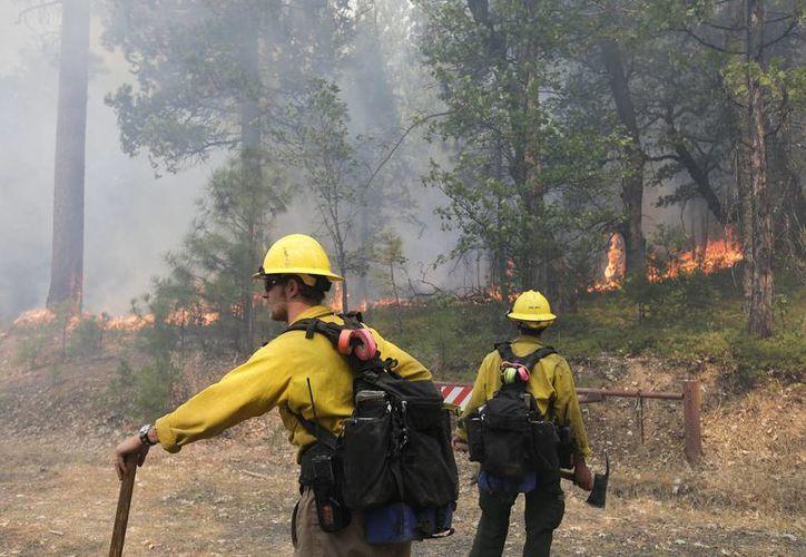 El costo preliminar el incendio Rim es de unos 20 millones de dólares. (Agencias)