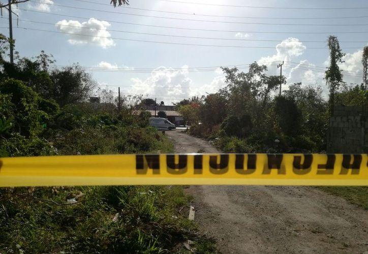 El cuerpo fue encontrado en un área verde de la Región 515. (Eric Galindo/SIPSE)