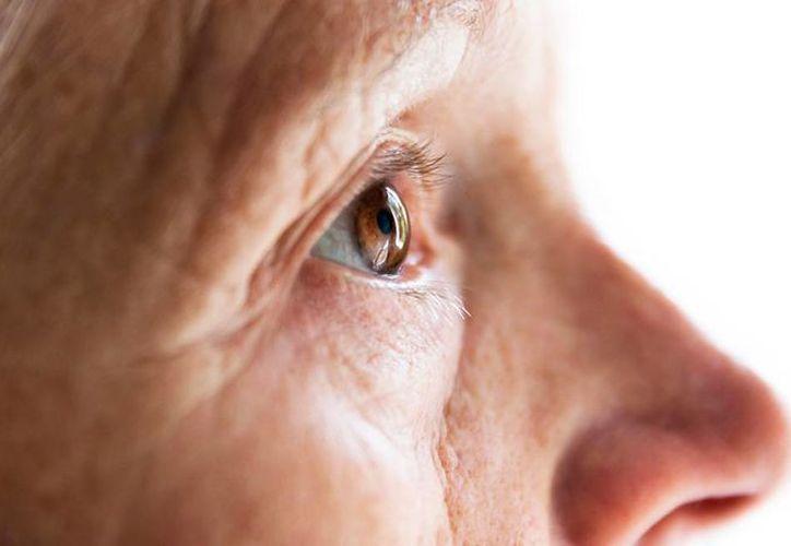 Los expertos estadounidenses estudiaron un grupo de 183 ancianos y actualmente realizan una nueve prueba para validar el test. (AARP)