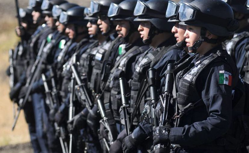 Certificado 94% del personal de la Policía Ministerial aseguró la PGR. (Notimex)