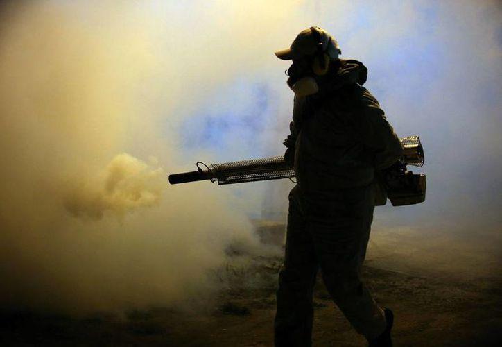 Las autoridades de Salud extendieron el combate al mosco transmisor del zika, dengue y chikungunya a las empresas chatarreras. La imagen, de un fumigador, está utilizada sólo con fines ilustrativos. (Archivo/NTX)