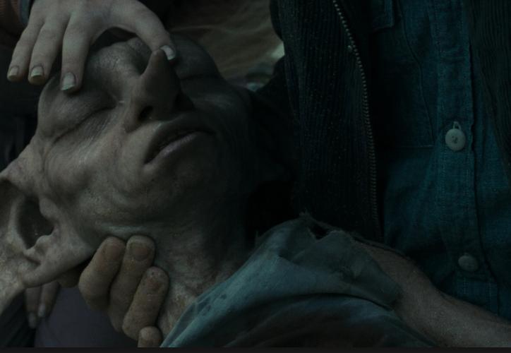 El elfo falleció en 'Las reliquias de la muerte' intentando escapar de la mansión de los Malfoy.  (Internet)