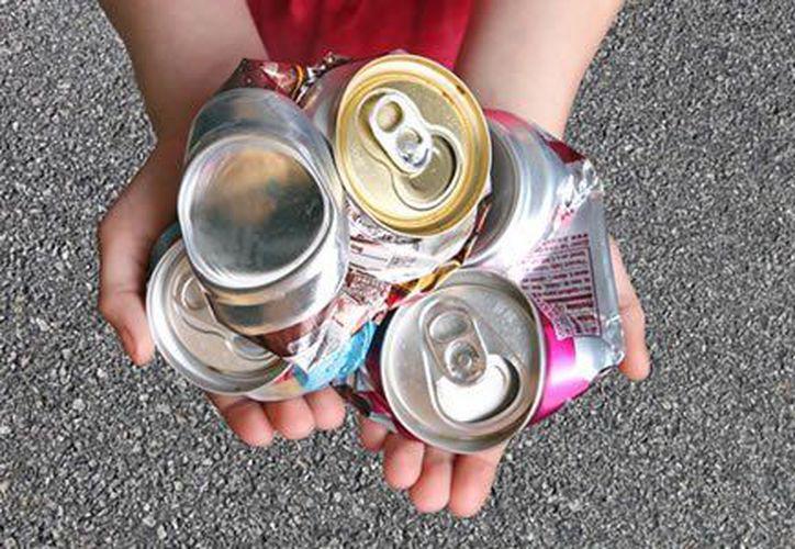 También se fomenta la cultura del reciclado para evitar tanta basura. (Contexto)