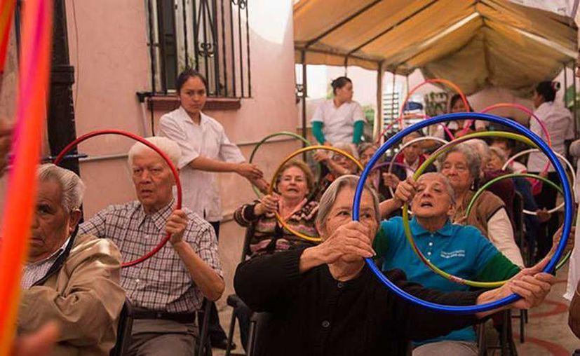 Las personas con Alzheimer podrían tener en el pulpo maya una cura para su enfermedad. (Excelsior)