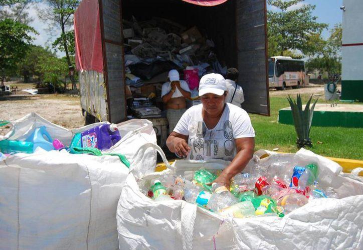 Los voluntarios recibieron el material y los acomodaron por categorías. (Tomás Álvarez/SIPSE)