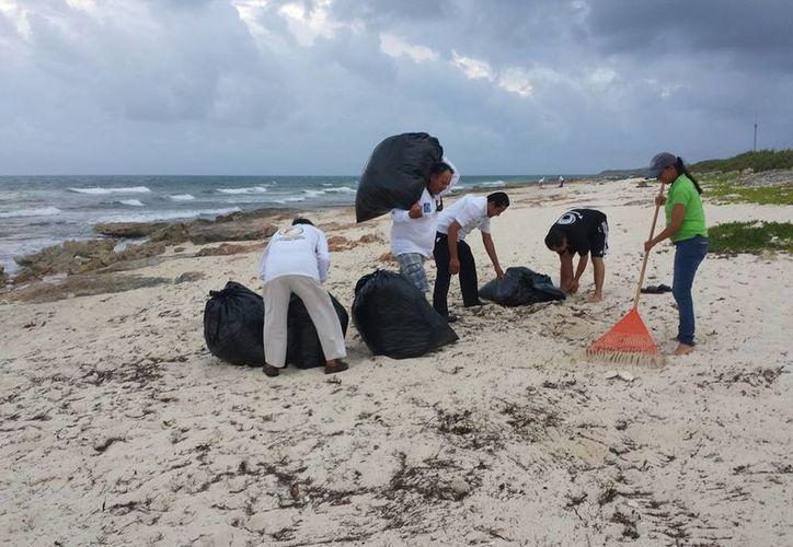 Se realizó la limpieza de una de las playas más importantes de anidación de tortuga, la playa ubicada frente a la colonia La Guadalupana. (Redacción/SIPSE)
