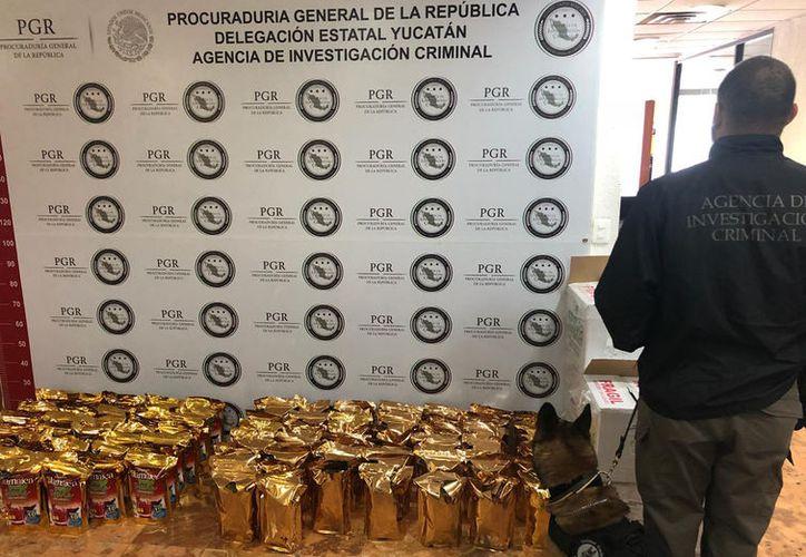 PGR en coordinación con Policía Federal decomisó 25 kilos de marihuana en un local de paquetería en Mérida. (SIPSE)