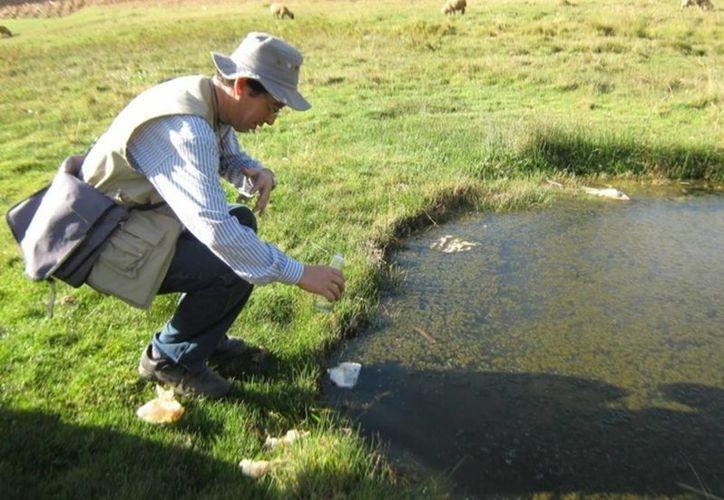 La Profepa revisa posibles daños ambientales por el incidente en la presa de jales de la minera Saucito. Imagen de contexto. (noticiasmvs.com)