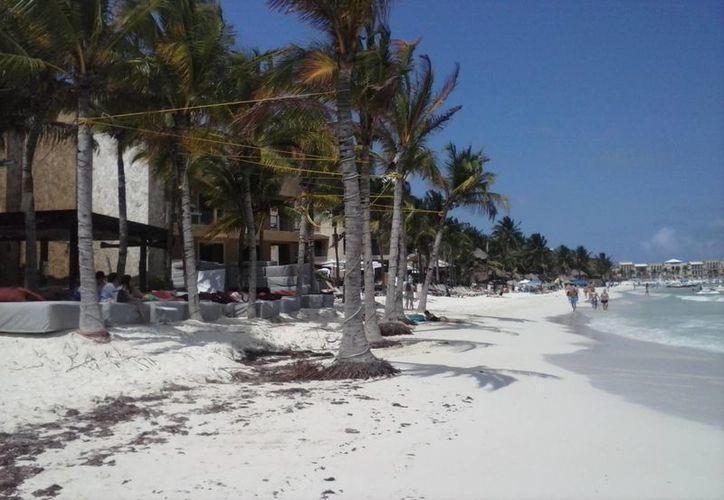 La erosión de las playas preocupa a los prestadores de servicios turísticos.  (Carlos Calzado/SIPSE)