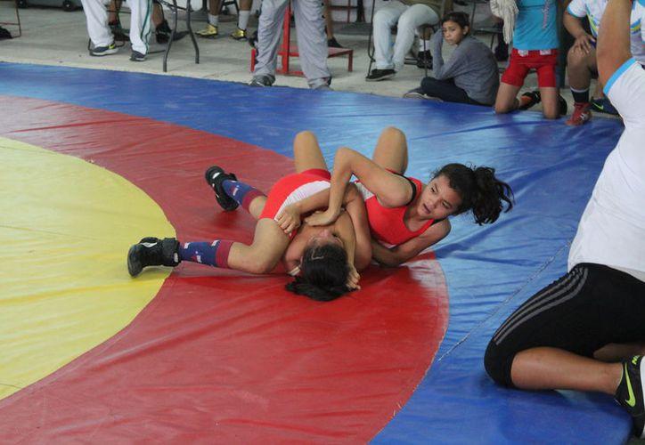 Luchadores del estado de categorías Escolar, Cadetes y juvenil, en ambas ramas, protagonizaron maratónica jornada de más de 50 combates. (Miguel Maldonado/SIPSE)