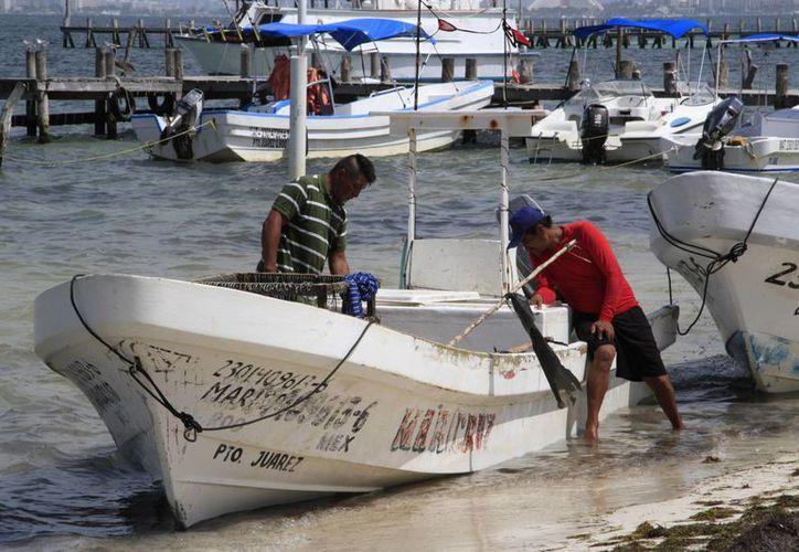 Esperan que el próximo viernes retomen las actividades marítimas. (Tomás Álvarez/SIPSE)