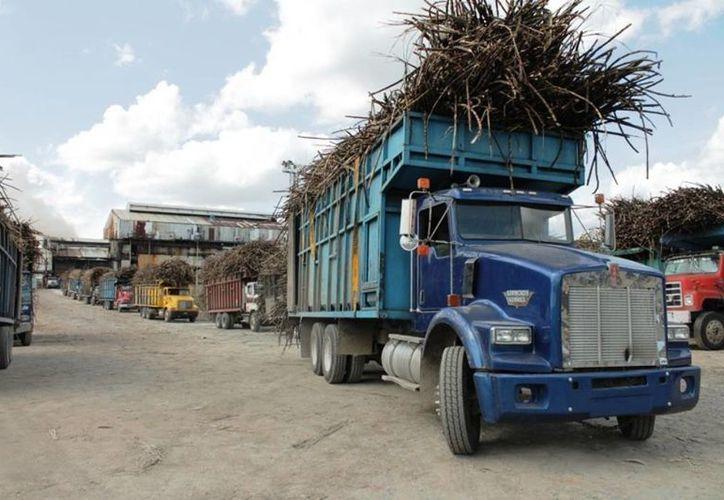 La producción de azúcar que se estima para este año es de 160 mil toneladas. (Edgardo Rodríguez/SIPSE)