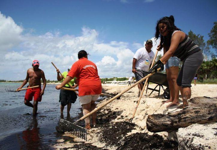 Los trabajadores del Programa de Empleo Temnporal para retirar sargazo de las playas de Solidaridad, piden atención. (Octavio Martínez/SIPSE)