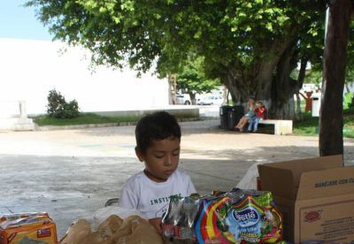 Invitan a llevar sus donativos en los centros de acopio. (Loana Segovia/SIPSE)