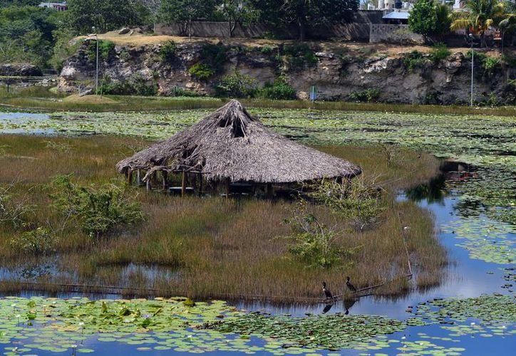 El alcalde de Mérida externó la posibilidad de conservar el Acuaparque mediante un arrendamiento. (SIPSE)