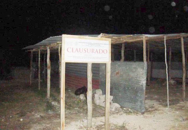 Sitio de procesamiento de pepino mar que fue clausurado. (Milenio Novedades)