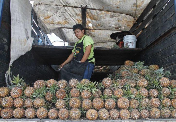 El camión conocido como  Tara llegó a Cancún para realizar inspecciones por parte de la  Profeco. (Redacción/SIPSE)