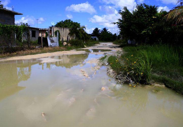 El nivel de las inundaciones alcanza hasta 50 centímetros de alto. (Harold Alcocer/SIPSE)