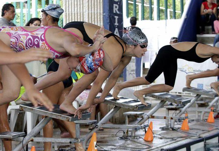 Durante el estatal de natación participaron 180 competidores. (Francisco Gálvez/SIPSE)