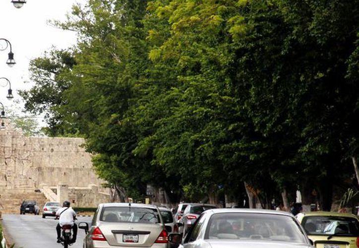 Barrera Concha descartó que la repavimentación sea de concreto estampado. (Milenio Novedades)
