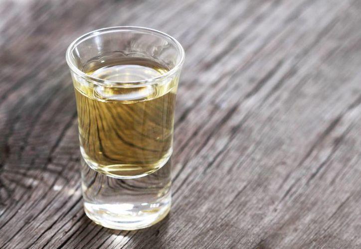 Investigadores del Cinvestav estudian las propiedades de las sustancias derivadas del agave Tequilana weber. (Internet)