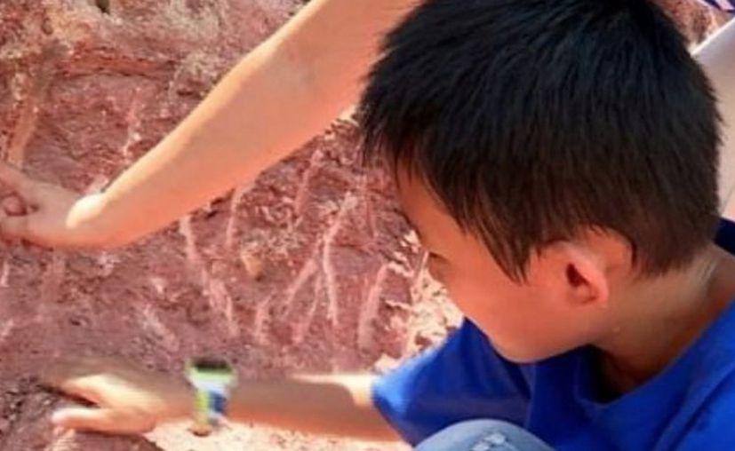 Acompañado por su madre, contactaron a las autoridades y varios especialistas acudieron a la escena. (Foto: Captura de Youtube)