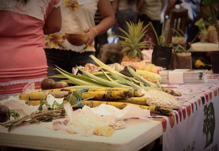 Cada vez menos personas de origen maya muestran interés por consumir los productos del campo. (Uziel Góngora/Milenio Novedades)