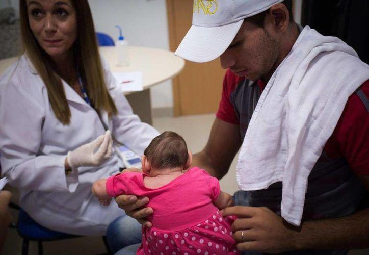 Hasta el momento se han confirmado en Brasil 223 casos la relación entre la microcefalia y el zika, mientras que en los restantes el vínculo entre la enfermedad y el virus todavía no ha sido completamente corroborado. (EFE/Archivo)