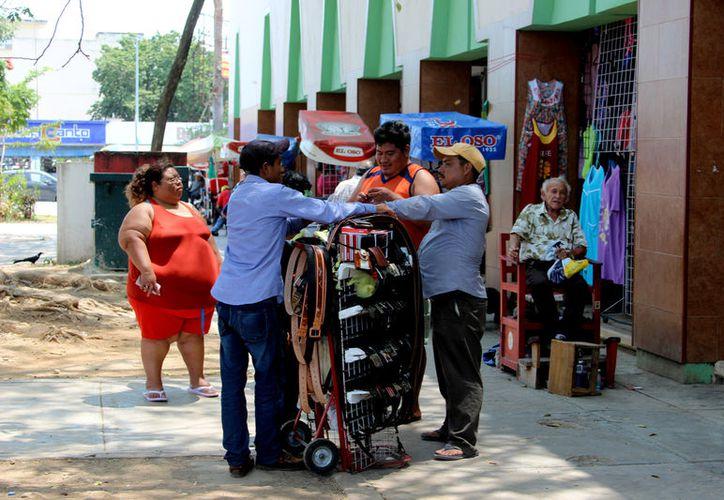 El instituto velará por los miembros de comunidades indígenas y que obtengan permisos de aprovechamiento ante autoridades. (Foto: Benjamín Pat / SIPSE)