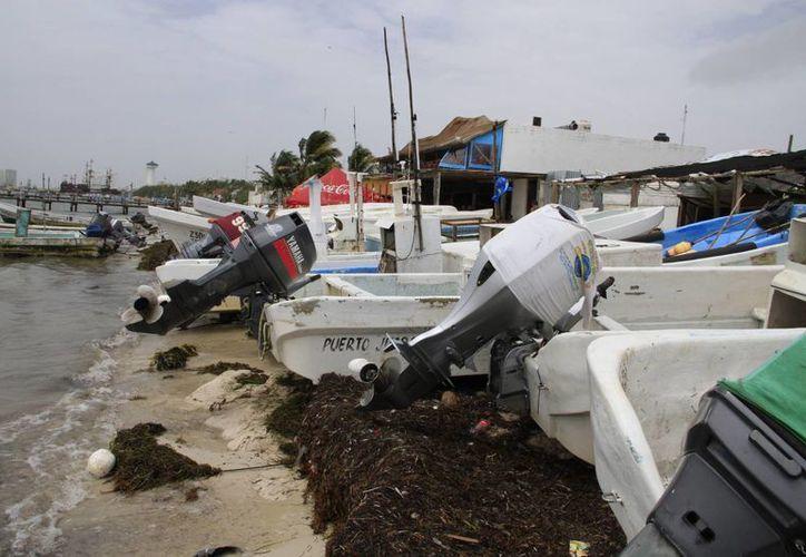 La Conapesca hará un estudio para conocer la situación actual de las embarcaciones. (Tomás Álvarez/SIPSE)