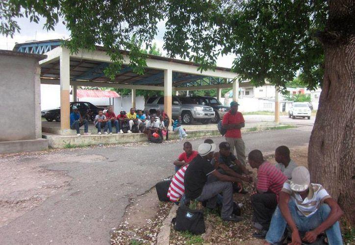 Haitianos ilegales detenidos por autoridades de República Dominicana. En los últimos días, los haitianos han solicitado 'masivamente' la tramitación de pasaportes, como un requisito que Dominicana les ha exigido para dejarlos trabajar legalmente. (elnacional.com.do)
