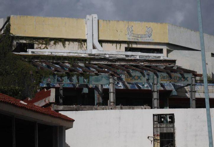 Incluso habitan en uno de los locales de la planta baja de lo que fuera una plaza comercial y de centros nocturnos hace algunos años. (Israel Leal/SIPSE)