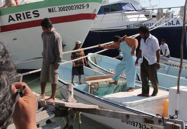 Los pescadores aprovechan al máximo los días de buen tiempo entre un frente frío y otro. (SIPSE)