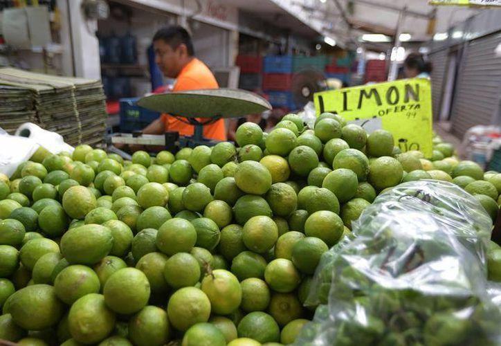 El limón en algunos lugares se ha vendido hasta en 50 pesos el kilo. (SIPSE)