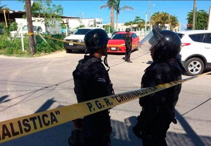 Policías federales catearon una congeladora de Progreso, en busca de pepino de mar. Hasta la tarde nadie había informado del resultado del operativo. (Óscar Pérez/SIPSE)