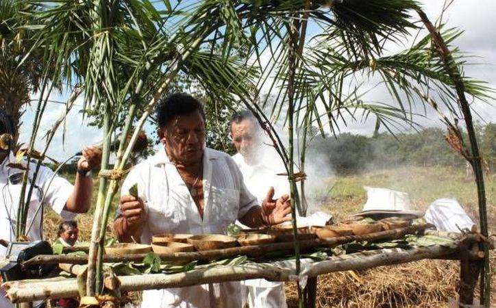 M dicos mayas impulsan creaci n de jard n bot nico for Jardin botanico medicinal
