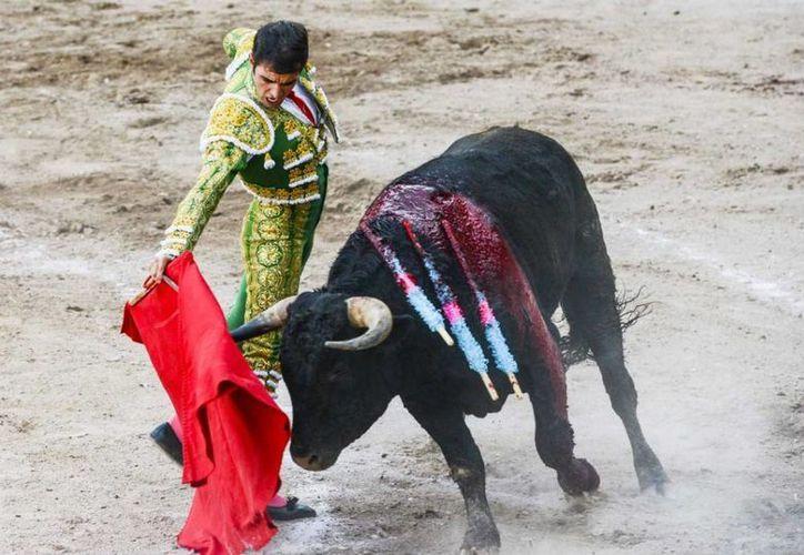 Pese a ser corneado en el escroto, el matador Arturo Macías, El Cejas, regresó para cortar dos orejas. (testigonocturno.com/Foto de archivo)