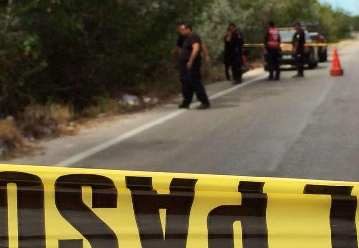 Policías acordonaron la zona donde fue encontrado el cadáver de un joven motociclista entre los manglares de la carretera Progreso-Chelem. (SIPSE)
